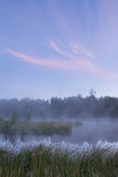 Una bella mattina nebbiosa Immagini Stock Libere da Diritti
