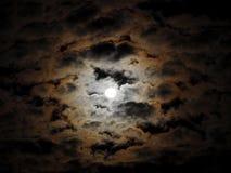 Una bella notte della luna piena Fotografia Stock