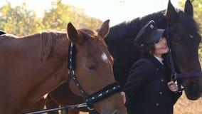 Una bella ragazza conduce due bei cavalli dietro le redini nel parco di autunno archivi video