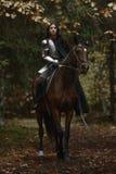 Una bella ragazza del guerriero con un chainmail e un'armatura d'uso della spada che montano un cavallo in una foresta misteriosa immagini stock libere da diritti