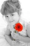 Una bella ragazza di quattro anni che tiene margherita arancione Immagine Stock