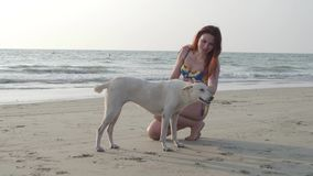 Una bella ragazza snella in un costume da bagno blu che segna un cane bianco sulla spiaggia un giorno di estate 4K video d archivio