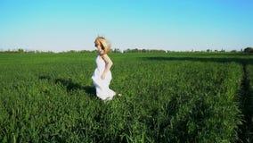 Una bella ragazza in un vestito tridimensionale passa il campo stock footage