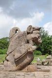 Una bella scultura del leone, tempiale Konark di Sun Immagine Stock