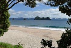 Una bella spiaggia alla città di Hahei, Nuova Zelanda immagini stock