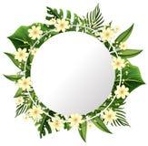 Una bella struttura del fiore royalty illustrazione gratis
