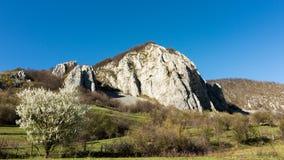 Una bella vista della campagna rumena un giorno caldo della molla fotografie stock libere da diritti