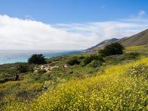 Una bella vista della linea costiera di California lungo la strada principale 1, Big Sur Immagini Stock Libere da Diritti