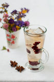 Una bevanda di rinfresco di freddo con ghiaccio Fotografie Stock