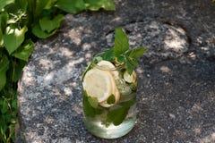 Una bevanda fresca della molla con la menta ed il limone in natura immagine stock