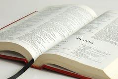 Una biblia abierta Fotos de archivo libres de regalías
