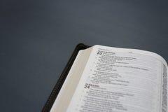 Una biblia abierta Foto de archivo libre de regalías