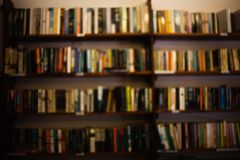 Una biblioteca casera del sitio interior grande con muchos libros diffirent La vista delantera al estante de madera llenó del gra imagen de archivo libre de regalías