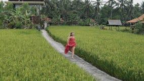 Una bionda snella di sport porta un vestito rosso lungo con una gonna fertile, funziona lungo il percorso su un terrazzo del riso stock footage
