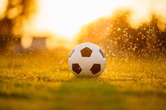 Una bola en el campo de hierba verde para el partido de fútbol del fútbol debajo de la luz y de la lluvia del rayo de la puesta d foto de archivo