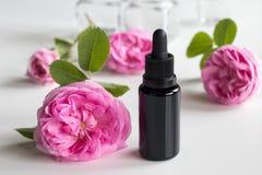 Una botella de aceite esencial de la rosa con las flores color de rosa fotos de archivo