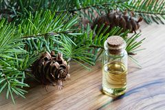Una botella de aceite esencial del abeto de douglas con el abeto de douglas ramifica Imagen de archivo libre de regalías