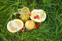 Una botella de jugo hecho en casa de la limonada con la cereza y agrios miente en el aire libre de la hierba Comida campestre en  fotografía de archivo libre de regalías