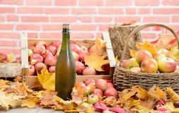 Una botella de sidra de Normandía, con muchas manzanas Imagen de archivo