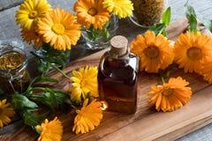 Una botella de tinte del calendula con el calendula fresco florece Foto de archivo