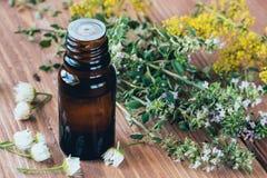 Una botella de vidrio oscuro con el aceite esencial del tomillo para el aromatherapy y la salud imagen de archivo libre de regalías