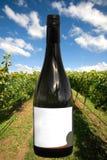 Una botella de vino con una escena del viñedo Fotografía de archivo