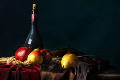 Una botella de vino viejo y de fruta madura en un fondo oscuro, todavía del holandés vida Fotografía de archivo libre de regalías
