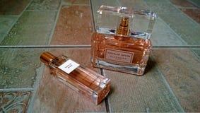 Una botella grande de perfume y una pequeña botella de agua de retrete foto de archivo