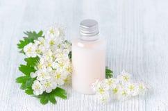 Una bottiglia del gel organico della doccia con i fiori freschi Fotografia Stock Libera da Diritti