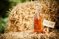 Una bottiglia dell'aceto di sidro naturale della mela su paglia fotografie stock libere da diritti