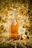 Una bottiglia dell'aceto di sidro naturale della mela su paglia Immagini Stock Libere da Diritti