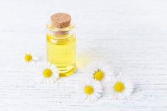 Una bottiglia dell'olio della camomilla con la camomilla fresca fiorisce Fotografia Stock