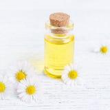 Una bottiglia dell'olio della camomilla con la camomilla fresca fiorisce Fotografie Stock Libere da Diritti