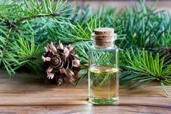 Una bottiglia dell'olio essenziale dell'abete di douglas con l'abete di douglas si ramifica immagine stock libera da diritti