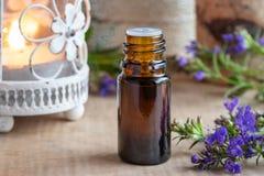 Una bottiglia dell'olio essenziale dell'issopo con l'issopo di fioritura fresco fotografie stock