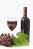Una bottiglia di vino rosso Immagini Stock Libere da Diritti