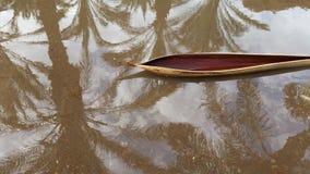 Una buccia torta del ramo che assomiglia ad una canoa in una pozza un giorno piovoso, con una riflessione delle palme e del cielo immagini stock libere da diritti