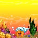 Una cáscara debajo del mar Imagenes de archivo
