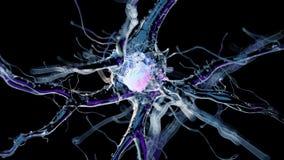 Una célula nerviosa humana ilustración del vector