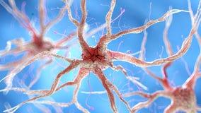 Una célula nerviosa humana sana ilustración del vector