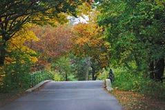 Una caída coloreó el puente alineado árbol en Morton Arboretum fotografía de archivo