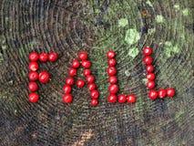 Una caída de la palabra Foto de archivo libre de regalías