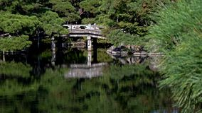 Una caída del agua fluye sobre rocas en un bosque japonés del otoño verde enorme foto de archivo