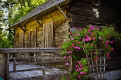 Una cabina de madera abandonada dentro del bosque Fotografía de archivo