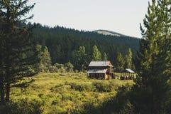 Una cabina di ceppo nel campo di caccia, Siberia, Altai Fotografie Stock