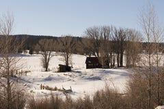Una cabina en el bosque imagen de archivo libre de regalías