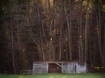 Una cabina o un establo en el bosque II Foto de archivo libre de regalías