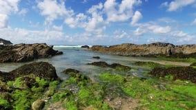 Una cacerola ascendente apacible del movimiento sobre la línea de la playa de Cornualles con alga marina y rocas metrajes