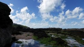 Una cacerola ascendente apacible del movimiento sobre rockpool con alga marina, revelar ondas del lapping y el promontorio distan almacen de video