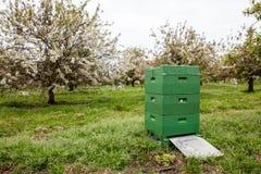 Una caja de la abeja Fotografía de archivo